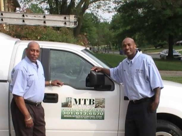 Pest Control Company Services